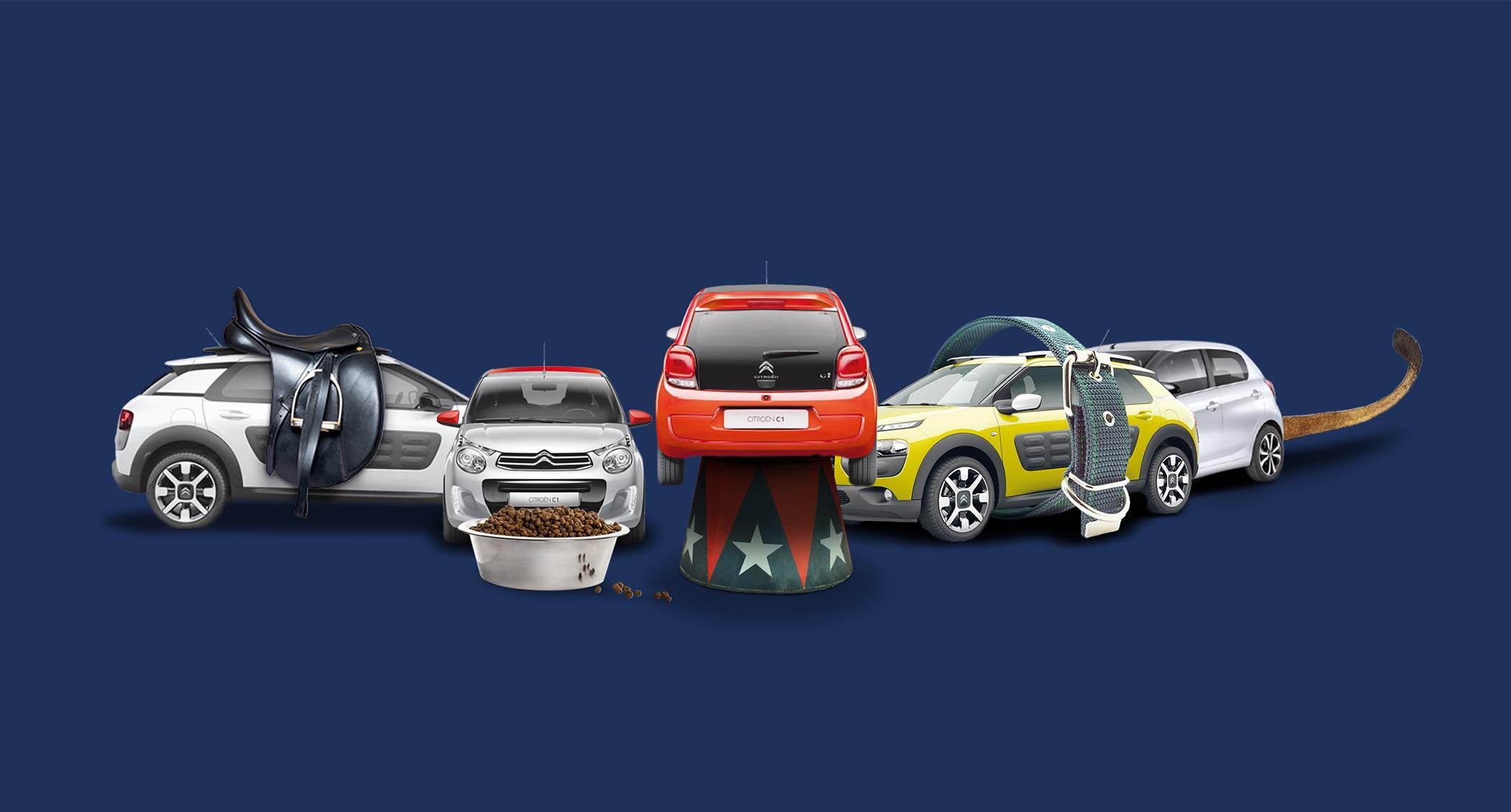 thuemmler_gebrauchtwagenkampagne_visuals_teamlemke_werbeagentur